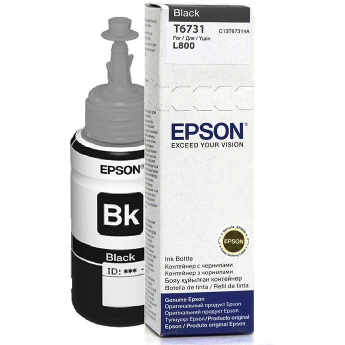 Epson T6731 Black Ink Bottle (CT13T673100)